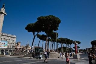 Rome_Colloseo_2017 (45 of 84)